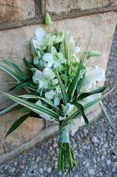 Flowers In Bismarck Nd - 25 best elope in north dakota images on pinterest north dakota