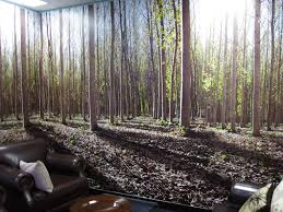 Wall Mural Wallpaper Nature Forest Tree Light Show Photo Wall Mural Ideas Zamp Co