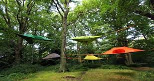 tentsile tree tent guide pro