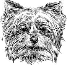 dog outline free vector download 5 422 free vector for