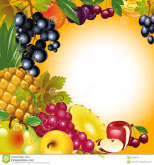 thanksgiving card fruit background stock vector image 21986973