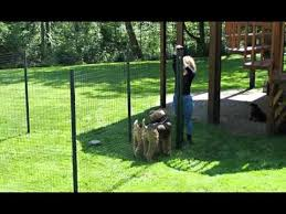 Backyard Ideas For Dogs Dog Fence Ideas Picture Collection Of Fences For Outdoor Pets