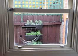 transcat clear cat door u2013 aussie pet doors u2013 dog cat flaps supply