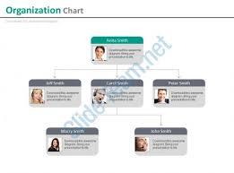 multilevel company organizational chart for employee profile