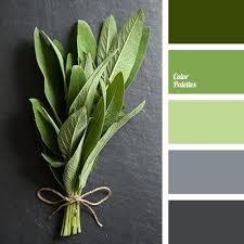 green and gray bedroom u2013 mediawars co
