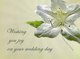 wedding wishes cards wedding wishes card white azalea greeting card for sale by