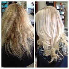 cut before dye hair 46 best olaplex before after images on pinterest hair care