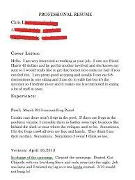 Verizon Resume Professional Resume