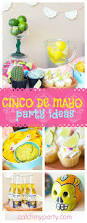 236 best fiesta party ideas images on pinterest parties mexican
