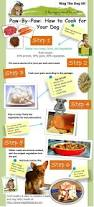 Healthy Kitchen Dog Food by Best 25 Homemade Dog Food Ideas On Pinterest Diy Dog Treats