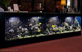 Fish Tank Desk by Fish Tank Reception Desk U2013 Valeria Furniture