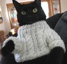 cat sweater cat sweater meme post knitgrrl