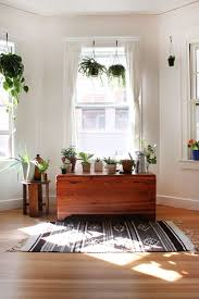 Home Decor Plants Living Room by House Plants Easy Home Decor