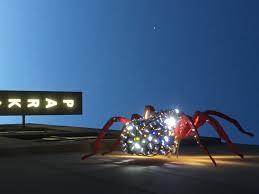 morgan hill halloween city spiderhugger backyard arachnology