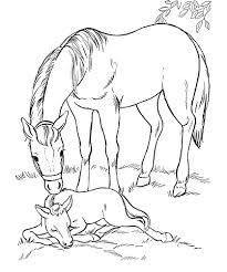 farm animals coloring page 15 best printable animal colouring pages for kids