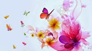 colorful butterfly designs background for desktop abstract hd