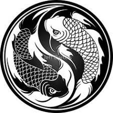 yin yang dragons sticker yin yang dragons and
