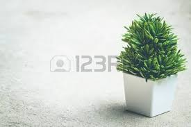 small artificial tree on ground vintage background copy space