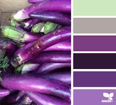 aubergine hues design seeds