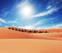 Snow In Sahara Top 5 Deserts Of The World The Inside Track