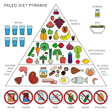 beginners guide to the paleo diet