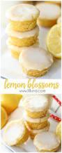 best 25 bite size desserts ideas on pinterest cannoli recipe