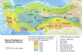 Italy Wine Regions Map by Turkish Wine Wikipedia