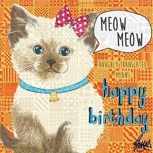 Cat Birthday Cards Siamese Cat Birthday Card Till By Rose Hill Kitten Cards