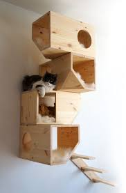 Cat Trees For Big Cats Www Catissa Com Cat Houses Cat And House