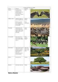 si e habitat conceitos de termos da ecologia
