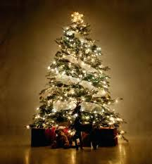 brown christmas tree sale white tree white tree snowman white tree blue lights