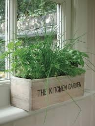 unwins herb kitchen garden kit planter pot seeds flower indoor