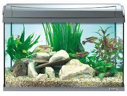 tetra aquaart fish tank 60 litre amazon co uk pet supplies