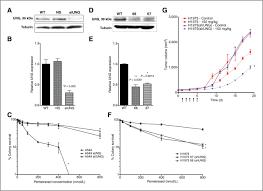uracil u2013dna glycosylase expression determines human lung cancer