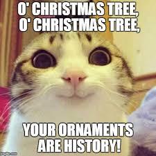 Cat Christmas Tree Meme - smiling cat meme imgflip