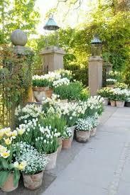 25 best garden pots ideas on pinterest potted plants potted