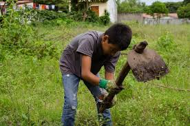 agriculture projects for students 7 ways outreach360 volunteers serve sustainably outreach360