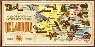 The ecoregions and native wildlife of oklahoma by