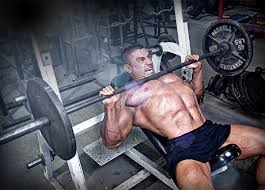 Stronger Bench Need A Stronger Bench Press Start Training Your Rear Delts