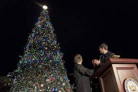 how many christmas lights per foot of tree bigfork eagle 79 foot montana christmas tree lit outside u s capitol
