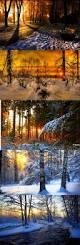 Sunset Orange by 135 Best Orange Sunset Forest Images On Pinterest Forests