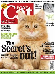 your cat 201308 cats veterinary physician