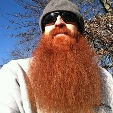 red beards very red beard long full thick fluffy beards