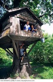 I Have Built A Treehouse - love treehouses backyard bliss pinterest treehouses tree