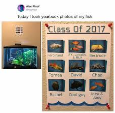 class yearbook dopl3r memes alec ploof alecploof today i took yearbook