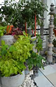 creating a small space vegetable garden with home harvest farms