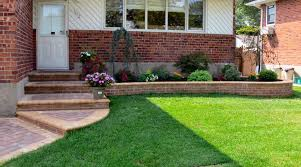 low maintenance landscaping ideas no grass lush green garden with