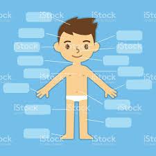 poster pour enfant partie du corps affiche pour les enfants stock vecteur libres de