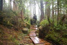 Seeking Oregon Coast 10 Awesome Oregon Coast Yurt Rentals For Less Than 60 Yurts