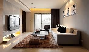 Studio Interior Design Ideas Apartment Modern Studio Living Room Idea Ikea With Brown Fur Rug